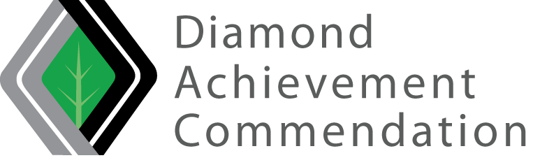 LOGO Diamond Acheivement